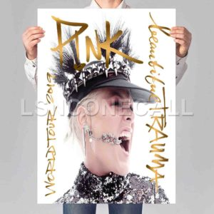 P!NK Beautiful Trauma World Tour 2019 Poster Print Art Wall Decor