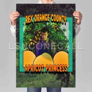 Rex Orange County Poster Print Art Wall Decor