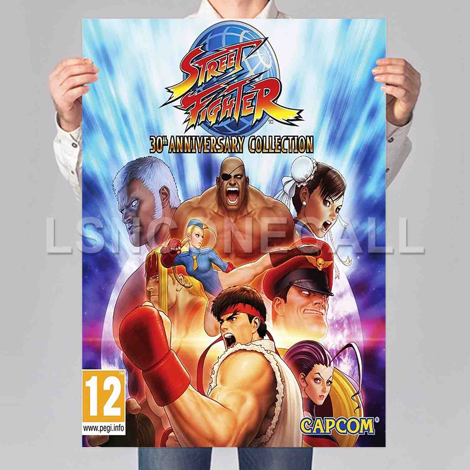 Street Fighter 30th Anniversary Collection Poster Print Art Wall Decor