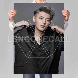 Tao EXO Poster Print Art Wall Decor