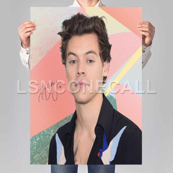harry styles solo Poster Print Art Wall Decor